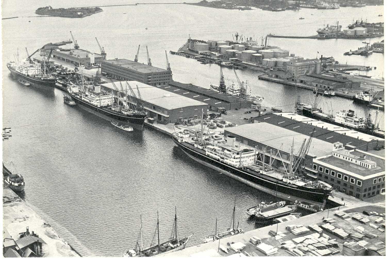 sømændenes forbund i danmark